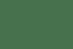 Body Zinc